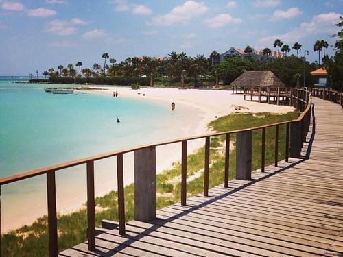 renaissance-aruba-528274-governors_beach_jpg