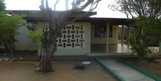Rooi Afo 27 | SOLD |