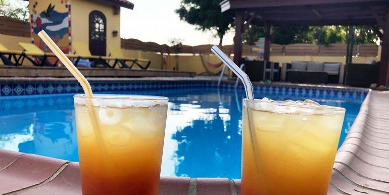 casa-galpy-aruba-garden-drinks-01-med